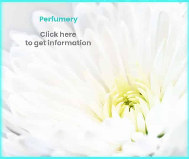 perfumery Eurotel cosmetics lab